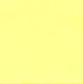 Hi Viz Yellow